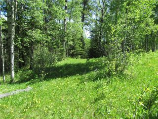 Photo 36: 351035A Range Road 61: Rural Clearwater County Detached for sale : MLS®# C4297657