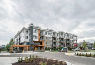 Main Photo: 210-4690 Hawk Lane in Tsawwassen: Tsawwassen North Condo for sale