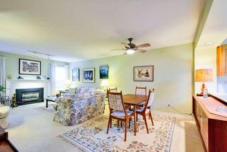Photo 4: 205 1234 MERKLIN STREET: White Rock Home for sale ()  : MLS®# R2009764
