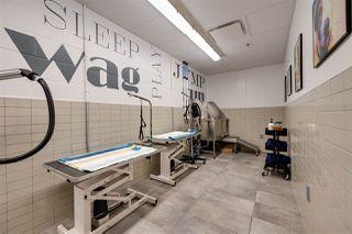 Photo 21: 4406 10310 102 Street in Edmonton: Zone 12 Condo for sale : MLS®# E4221002
