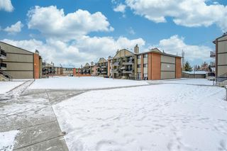 Main Photo: 3106 13045 6 Street SW in Calgary: Canyon Meadows Apartment for sale : MLS®# A1058928