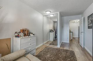 Photo 16: 3106 13045 6 Street SW in Calgary: Canyon Meadows Apartment for sale : MLS®# A1058928