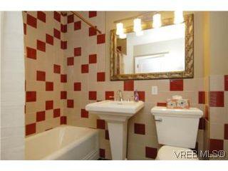Photo 14: 3934 Cedar Hill Cross Rd in VICTORIA: SE Cedar Hill House for sale (Saanich East)  : MLS®# 491764