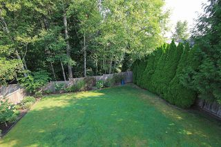 Photo 22: 22691 KENDRICK Loop in Maple Ridge: East Central House for sale : MLS®# V1080108