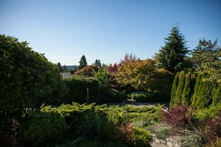 Photo 14: 1135 LAWSON AVENUE in WEST VANC: Ambleside House for sale (West Vancouver)  : MLS®# R2000540