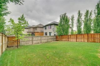 Photo 38: 17 CRANRIDGE TC SE in Calgary: Cranston House for sale : MLS®# C4188066