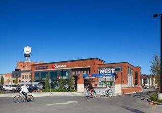 Photo 16: 6 10315 115 Street in Edmonton: Zone 12 Condo for sale : MLS®# E4198096