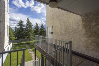 Photo 22: 195 LANCASTER Terrace in Edmonton: Zone 27 Carriage for sale : MLS®# E4206160