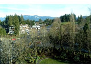 """Photo 13: 705 995 ROCHE POINT Drive in North Vancouver: Roche Point Condo for sale in """"ROCHE POINT TOWER"""" : MLS®# V986195"""
