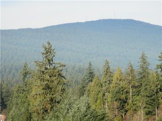 """Photo 14: 705 995 ROCHE POINT Drive in North Vancouver: Roche Point Condo for sale in """"ROCHE POINT TOWER"""" : MLS®# V986195"""