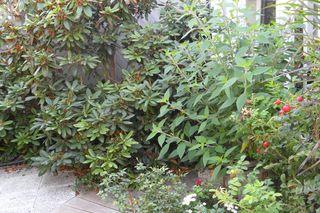 Photo 25: 1241 Monashee Crt in Kamloops: Sahali House 1/2 Duplex for sale : MLS®# 118953