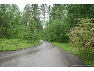Photo 4: 1400 Southeast 20 Street in Salmon Arm: Hillcrest Vacant Land for sale (SE Salmon Arm)  : MLS®# 10112895