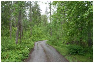 Photo 51: 1400 Southeast 20 Street in Salmon Arm: Hillcrest Vacant Land for sale (SE Salmon Arm)  : MLS®# 10112895