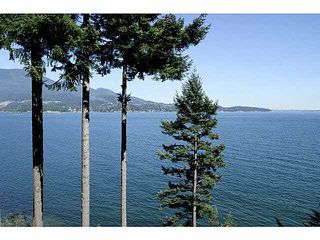 Photo 19: 779 TAYLOR ROAD: Bowen Island House for sale : MLS®# V1131681