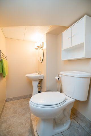 Photo 27: 1019 Downing Street in Winnipeg: West End / Wolseley Single Family Detached for sale (West Winnipeg)  : MLS®# 1616370