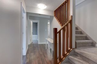 Photo 13: 11215 35 AV NW in Edmonton: Zone 16 House for sale : MLS®# E4138404