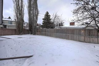Photo 28: 11215 35 AV NW in Edmonton: Zone 16 House for sale : MLS®# E4138404