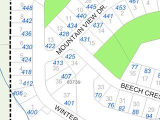 Photo 6: 407 Winter Dr in LAKE COWICHAN: Du Lake Cowichan Land for sale (Duncan)  : MLS®# 829688