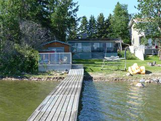 Photo 15: 14 Viola Beach: Rural Wetaskiwin County House for sale : MLS®# E4182406