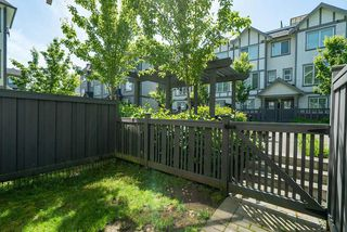 """Photo 2: 27 8217 204B Street in Langley: Willoughby Heights Townhouse for sale in """"Everly Green"""" : MLS®# R2459604"""