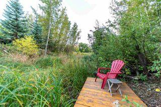 Photo 45: 19 GREYSTONE Drive: Rural Sturgeon County House for sale : MLS®# E4214442
