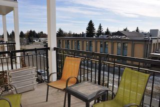 Photo 11: 314 9820 165 Street in Edmonton: Zone 22 Condo for sale : MLS®# E4219103