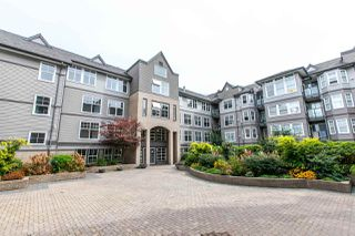 Photo 1: 121 20202 56 Avenue in Langley: Langley City Condo for sale : MLS®# R2215957
