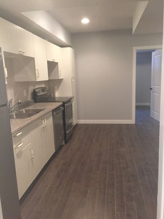 Photo 2: 552 Albany Way (basement) in Edmonton: basement suite for rent