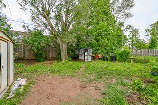 Photo 3: 52 Martha Street in Hamilton: House for sale : MLS®# H4056393