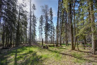 Photo 39: 50047 Township Road 41-5A in Rural Clearwater County: CM Rural Clearwater Residential Acreage for sale (Clearwater County)  : MLS®# CA0175798