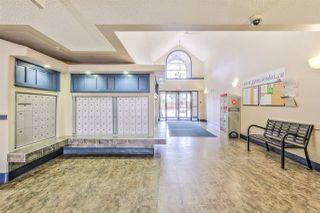 Photo 3: 407 3425 19 Street in Edmonton: Zone 30 Condo for sale : MLS®# E4200062