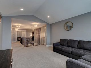 Photo 14: 3694 WESTCLIFF Way in Edmonton: Zone 56 House for sale : MLS®# E4191027