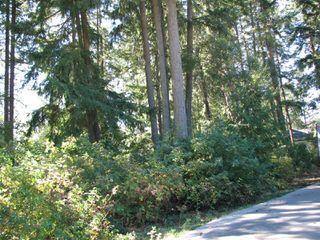 Photo 13: lot 46: Blind Bay Land Only for sale (shuswap)  : MLS®# 10214876