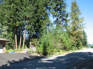 Photo 15: lot 46: Blind Bay Land Only for sale (shuswap)  : MLS®# 10214876