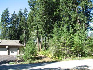 Photo 4: lot 46: Blind Bay Land Only for sale (shuswap)  : MLS®# 10214876