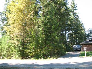 Photo 6: lot 46: Blind Bay Land Only for sale (shuswap)  : MLS®# 10214876