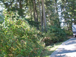 Photo 12: lot 46: Blind Bay Land Only for sale (shuswap)  : MLS®# 10214876