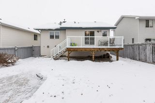 Photo 34: 21 HARCOURT Crescent: St. Albert House for sale : MLS®# E4221402