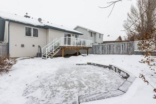 Photo 33: 21 HARCOURT Crescent: St. Albert House for sale : MLS®# E4221402