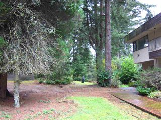 Photo 12: 1969 DRUMMOND Drive in Vancouver: Point Grey House for sale (Vancouver West)  : MLS®# R2521806