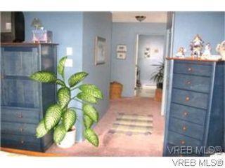 Photo 4: 1338 Prillaman Ave in VICTORIA: SW Interurban Single Family Detached for sale (Saanich West)  : MLS®# 511178
