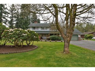 Photo 3: 4813 241 ST in Langley: Salmon River House for sale : MLS®# F1437603