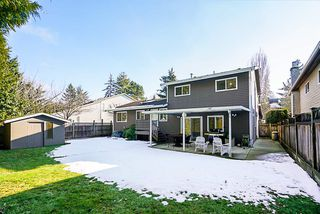 Photo 20: 19895 50A AVENUE in Langley: Langley City House for sale : MLS®# R2342291