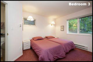 Photo 53: #5 6741 Eagle Bay Road: Eagle Bay House for sale (Shuswap Lake)  : MLS®# 10207339