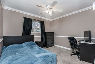 Photo 10: 11683 202A Street in Maple Ridge: Southwest Maple Ridge House for sale : MLS®# R2419830