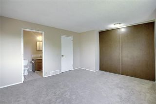 Photo 21: 321 FALSHIRE Drive NE in Calgary: Falconridge Detached for sale : MLS®# C4301765