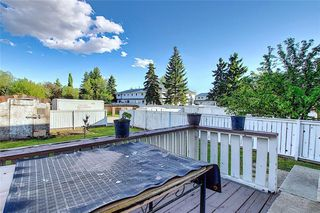 Photo 17: 321 FALSHIRE Drive NE in Calgary: Falconridge Detached for sale : MLS®# C4301765