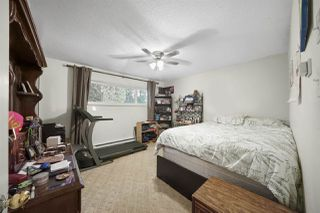 Photo 11: 11556 WOOD Street in Maple Ridge: Southwest Maple Ridge House for sale : MLS®# R2478427