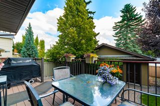 Photo 44: 3812 15A Street SW in Calgary: Altadore Detached for sale : MLS®# A1019070