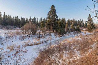 Photo 11: 911 BLACKETT Wynd in Edmonton: Zone 55 House for sale : MLS®# E4224950